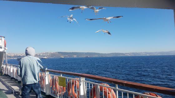 uldag ferry